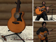 Acoustic Guitar on Stand - BOX