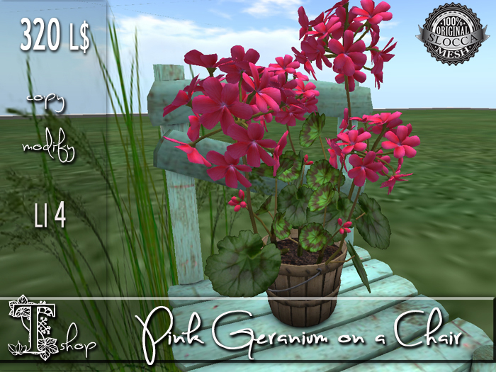 Pink Geranium on a Chair MC
