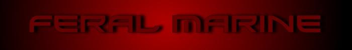 Mp store image