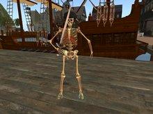 Pirate Skeleton!