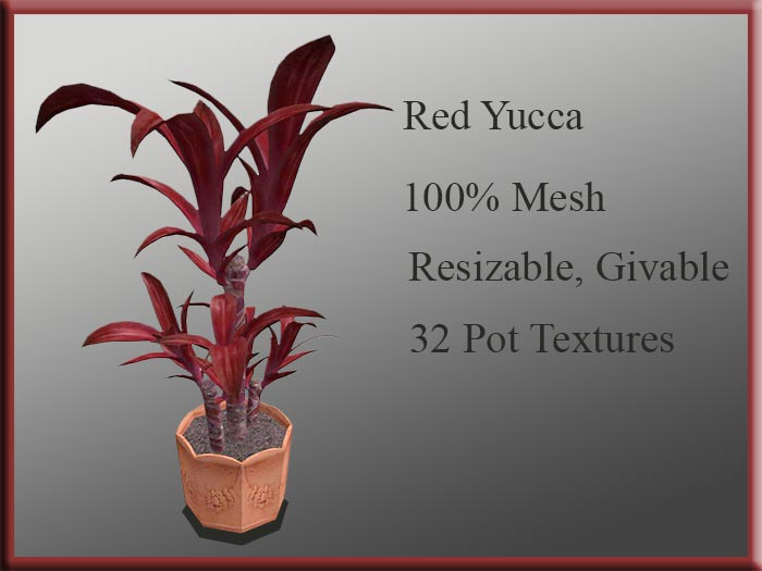 !MM! Yucca Red