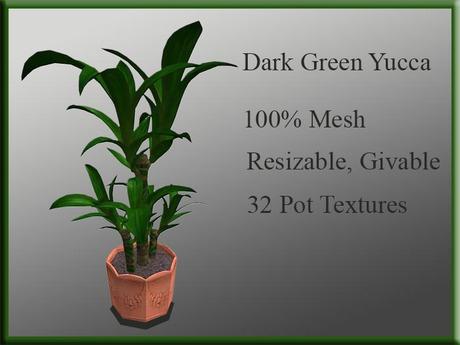 !MM! Yucca Dark Green