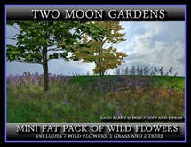 TMG -MINI FAT PACK OF WILD FLOWERS*