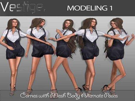Vestige Modeling 1