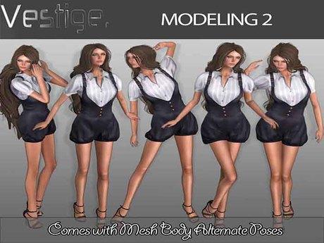 Vestige Modeling 2