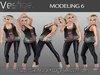 Vestige Modeling 6