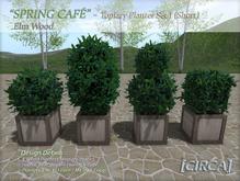 """[CIRCA] - """"Spring Cafe"""" - Topiary Planter Set 1 (Short) - Elm"""