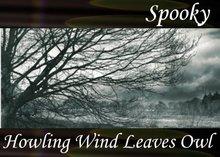 Atmo-Spooky - Howling Wind Leaves Owl 1:20