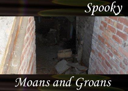 Atmo-Spooky - Groans & Moans 1:00