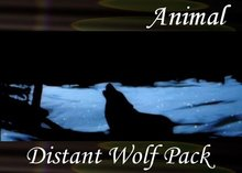 Atmo-Animal - Distant Wolf Pack 0:30