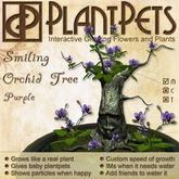 PlantPet Seed [Smiling Orchid Tree *Purple*] RARE ELITE