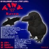 """Tiny Avater """"Raven"""""""