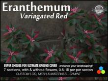 Eranthemum Delivery Crate Red v1