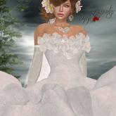 Bridal Wedding Dress - Noreen DEMO