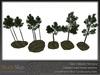 Skye scots pine 3