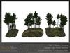 Skye scots pine 5