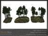 Skye scots pine 6