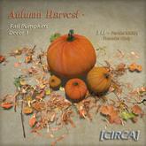 "[CIRCA] - ""Autumn Harvest"" - Fall Pumpkins - Decor 1"