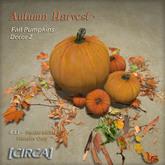 "[CIRCA] - ""Autumn Harvest"" - Fall Pumpkins - Decor 2"