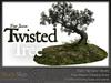 Skye twisted tree 2