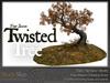 Skye twisted tree 4