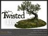Skye twisted tree 5