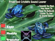 :: Furtropolis :: - Frogs and Crickets Sound Looper