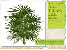 *Ya's* Tropical Plants - THRINAX PALM - One Prim - Sculpted - Copy+Mod!