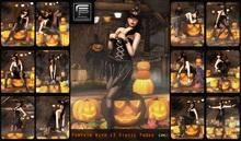 :: Focus Poses Pumpkin Poses :: ( wear me )