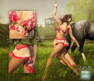 Wertina - Gypsy Bralette Red