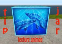 tipj animated dolphin