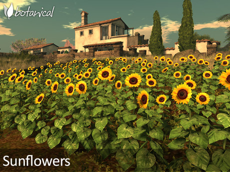 Second Life Marketplace Botanical Sunflower Set