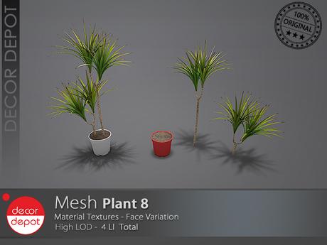 [DD] - FULL PERM  Plant 8
