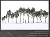 Skye birch grove 3