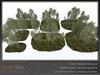 Skye birch grove 8