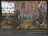 Skye sbirch grove 10