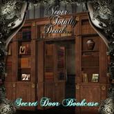 Secret Door Book Case