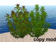 Big Bushes - Mesh - Copy Mod