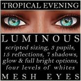 Mayfly - Luminous - Mesh Eyes (Tropical Evening)