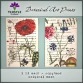 Thistle Homes - Botanical Art Prints - 100% Original Mesh