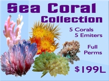 Sea Coral Collection