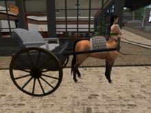 {{P.i.D&D}} Centaur Fancy Chasis
