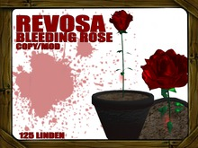 REVOSA Bleeding Rose