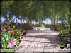 Truchet  silver birch and aubretia   summer a1