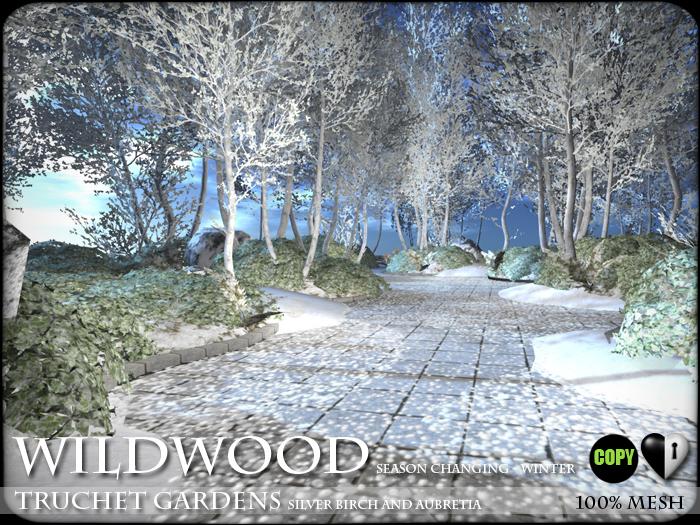 Birch Trees and Flowers - Truchet Gardens - Birch and Aubretia - SEASON CHANGING - C/M