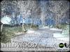 Truchet  silver birch and aubretia  winter a1