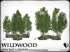 Truchet  silver birch and aubretia   ref4