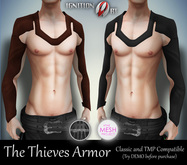IGNITION ART - The Thieves Armor