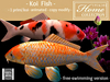 Tlc koi fish black mesh