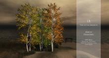 100% Mesh Realistic Birch with all Seasons Menu